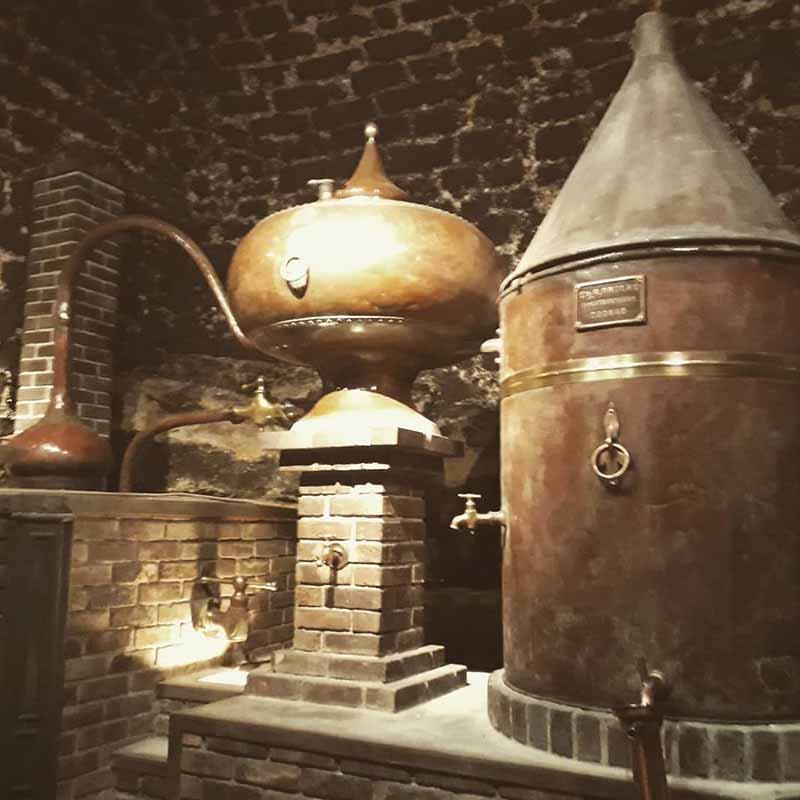 entradas al museo del vino