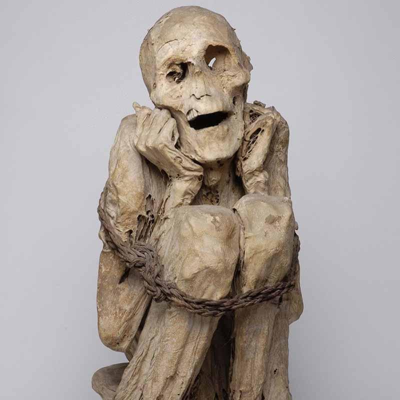 momia museo del hombre