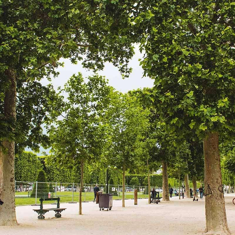 parque campo de martes de paris